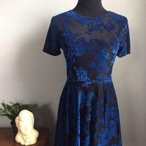 Floral Velvet Skater Dress