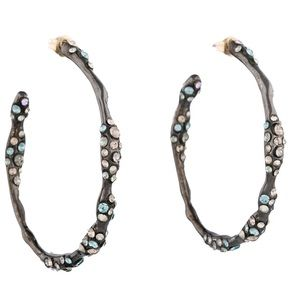 Alexis Bittar Jewelry - Alexis Bittar Crystal Hoop Earrings