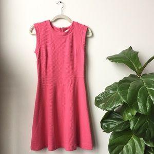 Bright Pink LOFT Dress