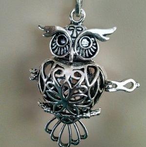 Jewelry - Beautiful silvertone owl aromatherapy necklace