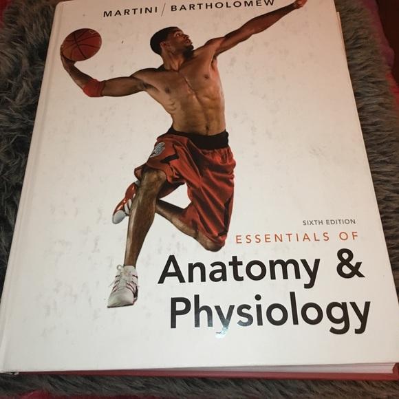 Other Sixth Edition Essentials Of Anatomy Physiology Poshmark