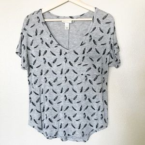 Belle Du Jour Tops - Feather Gray V-Neck Tee T-Shirt
