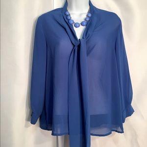 Cobalt Blue Sheer Blouse