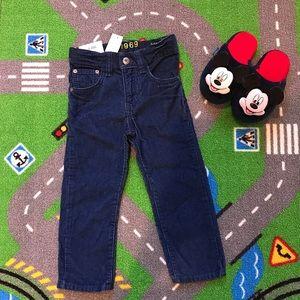 Gap Toddler Boy Pant