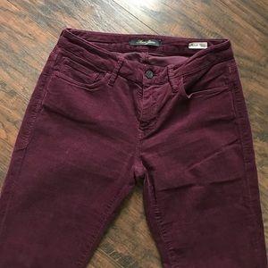 Mavi Pants - Mavi Jeans
