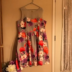 City Chic Dresses & Skirts - Gorgeous Grey & Floral City Chic Dress
