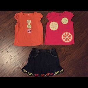 Gymboree Other - Gymboree Citrus Cooler Baby Girl Toddler Outfit