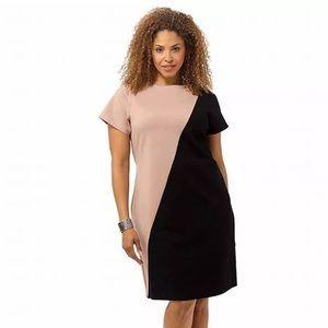 MYNT 1792 Dresses & Skirts - MYNT 1792 $198 Damaris Sheath Dress In Black & Tan