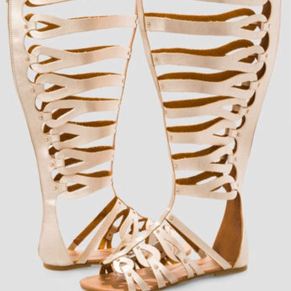 51760b4be0a 8W Ashley Stewart Wide Calf Gladiator Sandal NWT