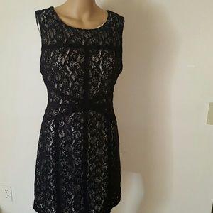 Bisou bisou lace dress