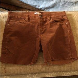 New York & Company Pants - Rust corduroy cutoffs from New York & Co