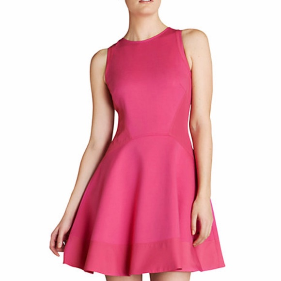 Ted Baker Dresses - Ted Baker Hearn Dress