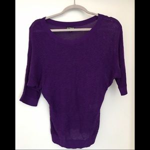 Express Sweaters - Purple mesh sweater