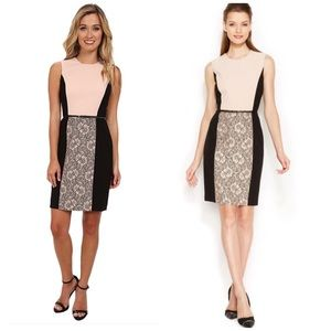 NWT Calvin Klein Blush Lace Belted Shift Dress