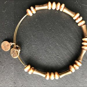 CLASSIC ALEX AND ANI | bamboo gold tone bracelet