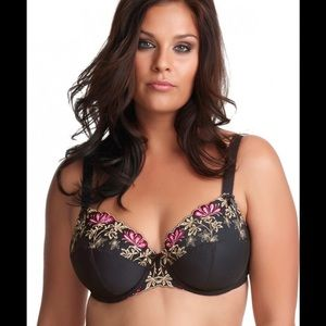 Elomi Other - 🎀 REDUCED (NWT) 🎀 ELOMI CLEO UNDERWIRE BRA 🎀