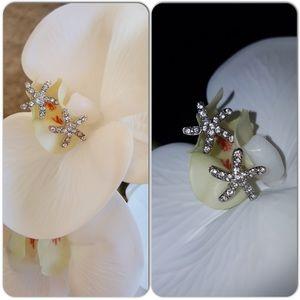 Jewelry - Starfish studs