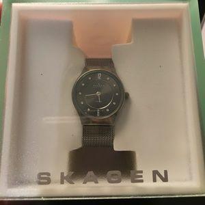 Skagen Accessories - Skagen mesh titanium watch