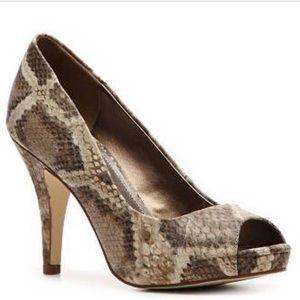 Fergalicious Shoes - Fergalicious by Fergie Snake Pumps - Grace