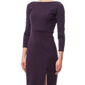 Susana Monaco Dresses & Skirts - Plum Susan Monaco Mara sheath dress. Size small.