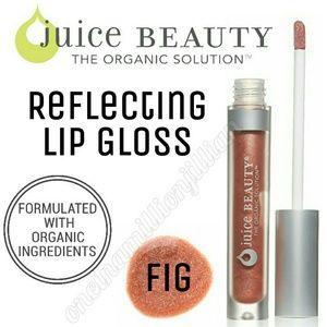 Juice Beauty Other - 🎀 Juice Beauty Reflecting Lip Gloss - Fig