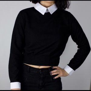 choies Sweaters - ✨ FLASH SALE ✨Cropped black sweater with collar