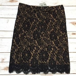 Cache Dresses & Skirts - 🌹 HP 🆕 NWT Cache Black Lace Skirt Size 4
