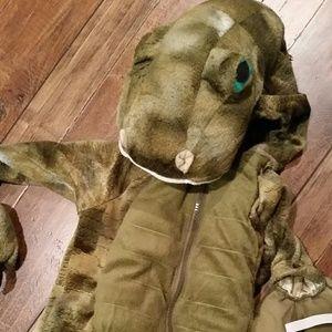 Other - Donosaur costume