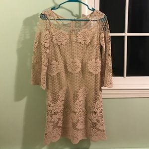 Muse Refined Dresses & Skirts - Tan lace dress