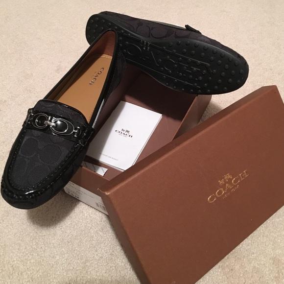 b4e1974a6e6 Coach Shoes