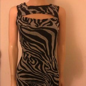 💥Zebra striped dress 👗NWOT ✨