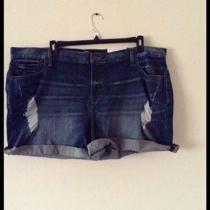 Pants - NWT Distressed Denim Boyfriend Shorts