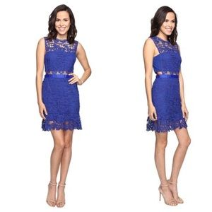 Romeo & Juliet Couture Lace Crop Skirt Dress