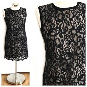 LOFT Black Blush Lace Dress