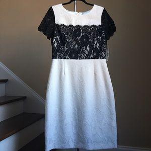Preston & York Dresses & Skirts - 🆕 Preston & York Dress