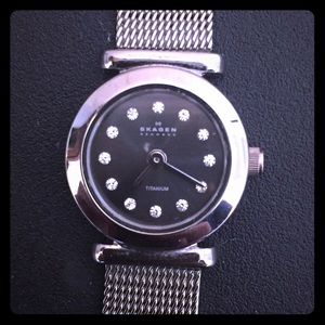 Skagen Accessories - Sparkly Skagen Titanium Watch
