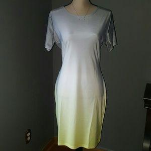 Dresses & Skirts - Ombre Shirt Dress