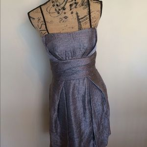 Maxandcleo beautiful silver lined dress