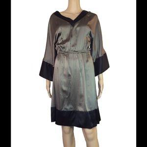 abaete Dresses & Skirts - 100% silk color blocked dress