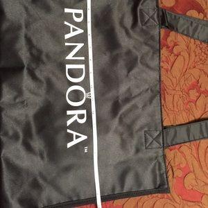 Pandora Bags - Pandora travel bag✨
