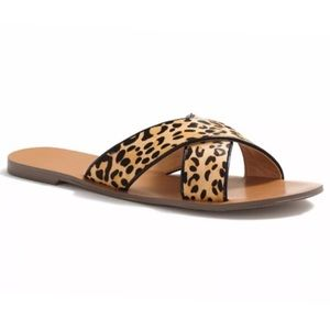 J. Crew Shoes - {J. Crew} Cheetah Calf Hair Seaside Sandals