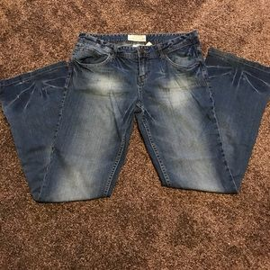 Maurices Denim - Maurice's Molli Flare Jeans 9/10