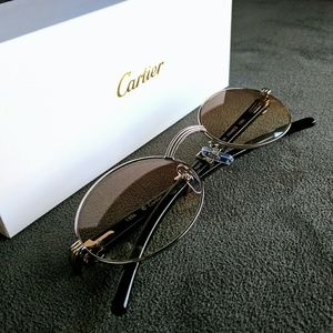 Cartier Other - Vintage Silver Cartier Sunglasses - Natural Horn