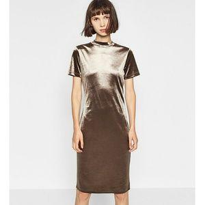 Zara Dresses & Skirts - Zara Silver/Grey Velvet Bodycon Dress