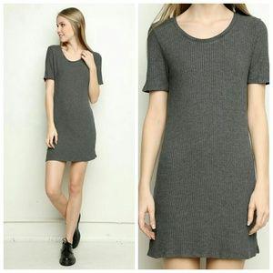 Brandy Melville Dresses & Skirts - NWOT Brandy Melville Emily Gray Ribbed Dress
