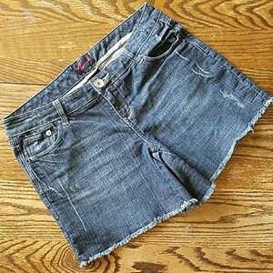 torrid Pants - Torrid Shorts