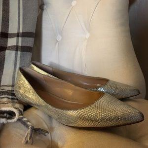 Banana Republic Metallic Textured Leather Flats