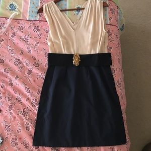 Sandro Pink and Navy Dress with Black Accent belt