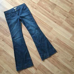 Denim - Bell Bottom Jeans