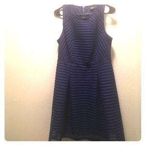 Cobalt Blue Dress: